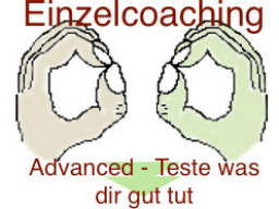 Webinar: Einzelcoaching Teste was dir gut tut-Muskelselbsttest Advanced 2 Stunden
