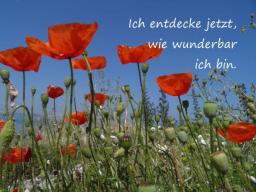 Webinar: ♥ Glück ist kein Zufall ...