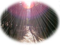 Webinar: Heimkehr ins Licht - Einweihung