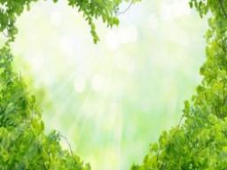 Webinar: Live-Meditation: Der Goldene Nektar der Hingabe