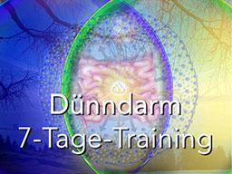 Webinar: Dünndarm 7-Tage-Training