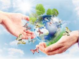 Webinar: Spirituelle Einzel-Begleitung - Information und Orientierung