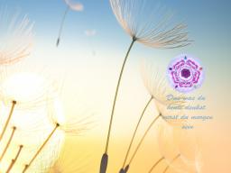 Webinar: Weisheit Deiner Seele - Reale Mediation