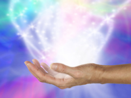 Webinar: ✩ Lotus Heiler ✩