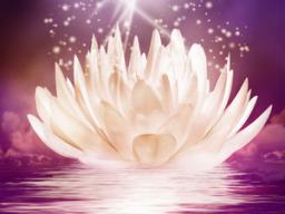 Webinar: Lotusblüten Reise mit energetischer Fernbehandlung
