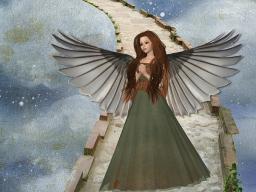 Webinar: Gruppenheilsitzung*Heilung mit den Engeln
