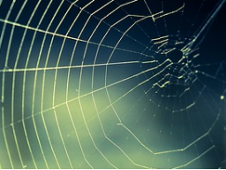 Webinar: Dein Business am seidenen Faden, was dich wirklich bremst