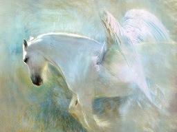 Webinar: Lichtwesen Pegasus