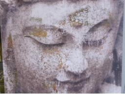 Webinar: Mit dem Buddha in die vollkommene Balance