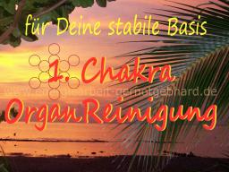 Webinar: OrganReinigung- 1. Chakra   ..musikfrei