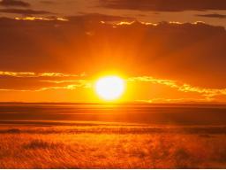 Webinar: Meditation: Die Reise ins Licht