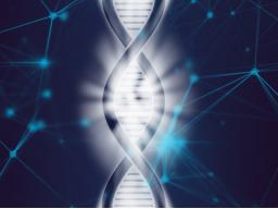 Webinar: Live Channeling mit Sabine Richter Thema: Kommunikation der DNA