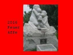 Webinar: 2016 - Das Jahr des Feuer Affen
