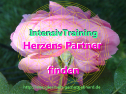 Webinar: Herzens Partner finden - EinzelBeratung