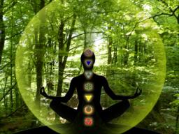 Webinar: Die Reise des Elementes Erde durch die Chakren nährt und stärkt Deinen Körper
