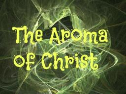 Webinar: DIE 4 CHRISTUS-AROMEN, DIE GOTT AM MEISTEN LIEBT - DU BIST MEHR ALS SCHWINGUNG - IMAGO DEI