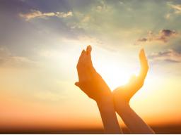 Webinar: Befreiung deines Herz-Weisheitschakras und Wiederanbindung an das kosmische Gitternetz