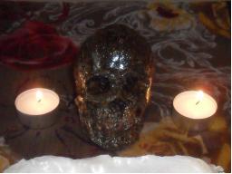 Webinar: Aktivierung der Fettverbrennung mit Kräuterlichtessenz