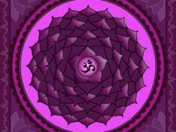 Webinar: Matrixklärung Bereich 7. Chakra