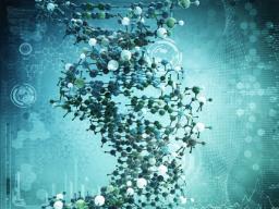 Webinar: Aktivierung 13-Strang DNA & Jugendgen - inkl. DMT-Bewusstseinsgen