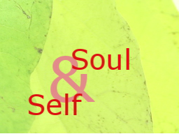 Webinar: When the self meets the soul, magic comes in your life