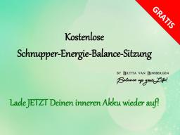 Webinar: Kostenlose Schnupper-Energie-Balance-Sitzung