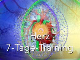 Webinar: Herz 7-Tage-Training