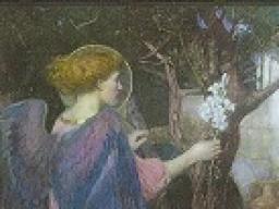 Webinar: Engel der Natur