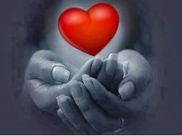 Webinar: Wo die Liebe wohnt - deine 5. Herzkammer (Eine Trancereise)