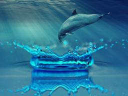 Webinar: (Einzelsitzung) Energiearbeit mit deinem Unterbewusstsein führt Dich in die Freiheit!