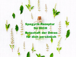 Webinar: SPAGYRIK Rezeptur mit persönlicher Botschaft der Devas