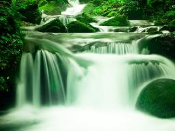 Webinar: NEU*Waterfall Energy 999