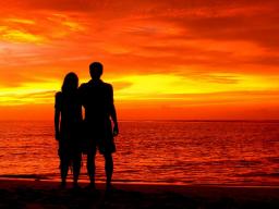Webinar: Liebe Partnerschaft Beziehung 30 Minuten Einzelsitzung