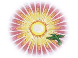 Webinar: Fogo Sagrado Kreis zum Thema: SPIRITUELLE FÄHIGKEITEN