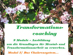 Webinar: Ausbildung - Mental- und Transformationscoach zur Blockadenlösung- /Modul I Das Chakrensystem