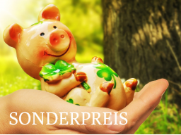 Webinar: SONDERPREIS