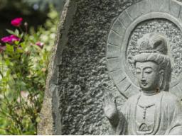 Webinar: Meditations- und Achtsamkeitstraining Einführung