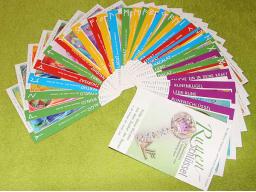 Webinar: Paket: Kartenset Runenschlüssel und Kurzcoaching