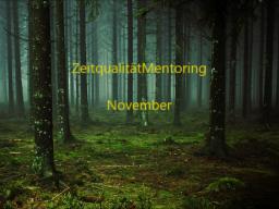 Webinar: ZeitqualitätMentoring November
