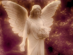 Webinar: Deine Persöhnliche Engelbotschaft Liebe und Hoffnung