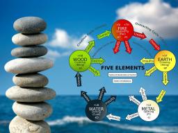 Webinar: Fünf Elemente Holz, Feuer, Erde, Metall und Wasser