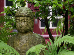 Webinar: Meditation - Bewusstsein