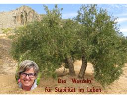 """Webinar: NachtSchwärmer: Das """"Wurzeln"""" für tiefe Stabilität im Leben."""