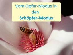 Webinar: Schöpfer-Kreis