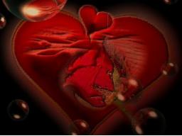 Webinar: Nie wieder Liebeskummer/die wahre Liebe finden:Gruppen SeminarMediale Beratung mit Herz