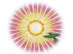 """Webinar: Inspiration & Meditation - Thema: """"Eltern & Ahnen"""""""