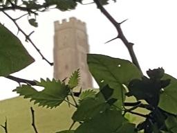 Webinar: Glastonbury - Eine Reise nach Avalon und zu dir selbst