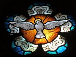 Webinar: Der Heilige Geist und das Herzfeld der Göttlichen Mutter