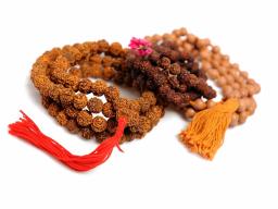 Webinar: Rudrakshas - wertvolle Geschenke der Natur an die Menschheit