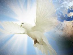 Webinar: Heiliger Geist und Christuslicht